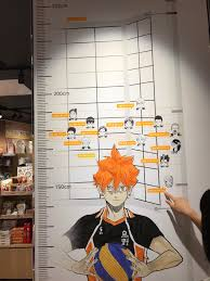 Height Chart At The Jump Shop Haikyuu
