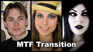 mtf transition eyebrow face nose cheek chin forehead