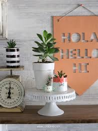 cute cereal box succulent planters made from cereal boxes and a few craft supplies