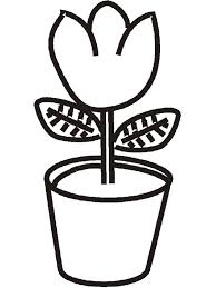 Small Picture Plant Coloring Pages Coloring Pages Trees Plants And Flowers All