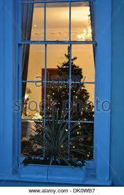 Christmas Display Stock Images RoyaltyFree Images U0026 Vectors Christmas Tree In Window