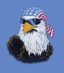Patriotic Eagle Men's Funny T-Shirt | Headline Shirts