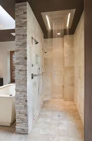 Walk-in shower. No glass to clean.