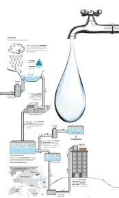 Home Drinking Water Infographic How Hong Kongs Drinking Water Reaches Your Home