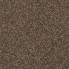 home decorators collection carpet sample wholehearted i color