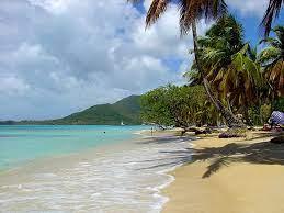 Vakanties in Martinique? Ontdek alle ...