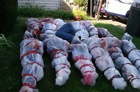 Body bags are a great scary halloween props to make the heart skip a beat .