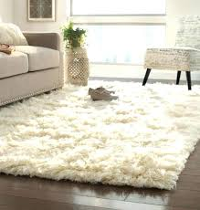 white fuzzy area rug small