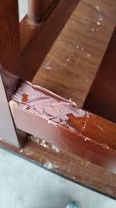 a beginner s guide to repairing broken wood
