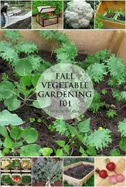 vegetable seeds for fall