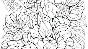 Free Printable Flower Coloring Pages Utibaamericascom