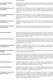 Addominali alla panca hyperextension pdf