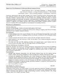 Best Solutions of Sample Private Equity Resume About Cover Letter