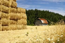 Western Rustic Decor Hay Stack Kits Centerpieces Diy Barns Barn Pole Ideas Build