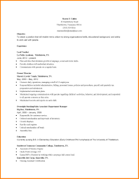 8 Early Childhood Resume Precis Format
