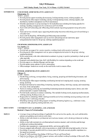Office Admin Resume Samples Resume Template For Adminant Good Cv Functional