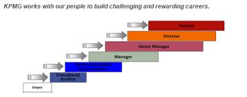 Kpmg Organizational Structure Chart Organizational Complexity Orgtheory