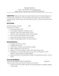 resume mailman reviews resume service reviews com resume meaning
