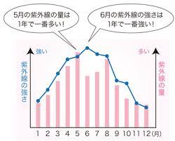 「紫外線量 大阪」の画像検索結果