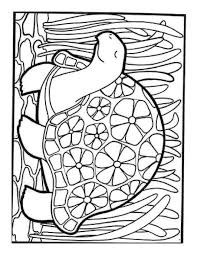 The Spider Coloring Pages For Adult And Iphone Coloring Page
