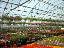 garden center nj. Condurso\u0027s Garden Center, Montville NJ Center Nj