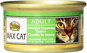 The 8 Best Canned Cat Foods Of 2019