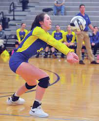 Volleyball: Lehman Catholic earns sectional title with 3-0 win over Yellow  Springs - Sidney Daily News