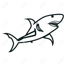 Shark Line Art Vector Illustration Shark Simple Outline Design
