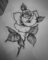новости розы Tatuajes De Rosas Dibujos De Rosas и Dibujos De Flores