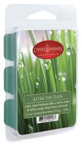<b>Наполнитель для воскоплавов</b> After The Rain Wax Melts 70,9г ...