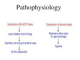 Pathophysiology Of Emphysema Flow Chart Emphysema