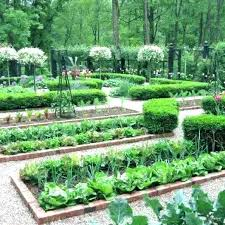 small vegetable garden layout best vegetable garden layout plan vegetable garden design layout about elegant small small vegetable garden layout