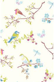 Pip Studio Early Bird 28519 Hd Wallpaper Download