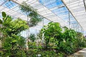 national botanic garden of latvia