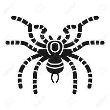 Tarantula Web Design Stock Illustration