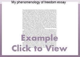 best marketing essay environment pollution