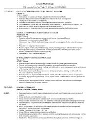 It Infrastructure Project Manager Resume Samples Velvet Jobs