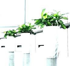 indoor planters unique indoor planters unique indoor plants unique indoor planters large indoor plant pots cool