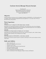 Examples Of Customer Service Goals Dnio Us Sample Resume Printable