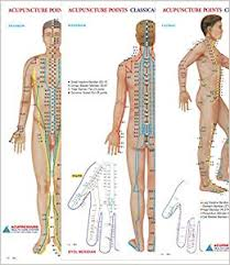 Acupuncture Meridian Chart Free Download Acupuncture Points Chart Meridians Set Of 3 Wall Chart