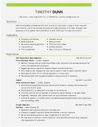 Funeral Director Resume Examples Sales Executive Resume Template 30