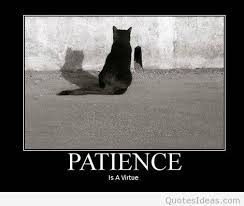 Search patience is a virtue images