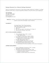 Work Experience Examples For Resume Job Resume Examples No