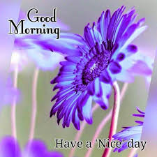 Good Morning Night Day Week Quotes And Pictures Best of Good Morning Greetings Days Of The Week Pinterest Morning