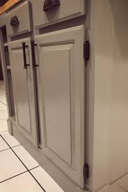 Ideas Alluring Spray Paint Hinges For Captivating Home Appliances