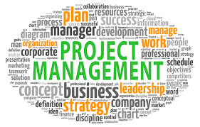 get project management assignment help online  project management assignment help