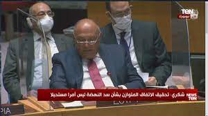 كلمة وزير الخارجية سامح شكري خلال جلسة مجلس الأمن الدولي بشأن أزمة سد  النهضة - YouTube