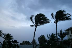 Image result for wind and storm