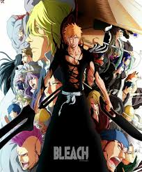 Shinigami & Quincy || Bleach | Bleach anime, Bleach art, Bleach manga