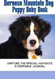 Bernese Mountain Dog Puppy Baby Book Debbie Miller